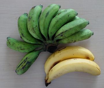 バナナ2 (2)