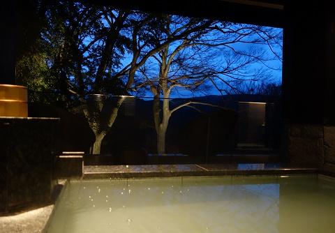お部屋の露天風呂からの眺めです